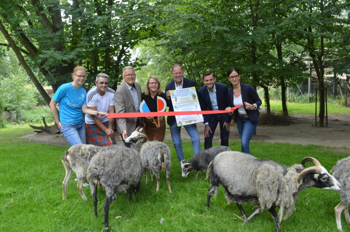 6. Zoo-Lauf in Osnabrück